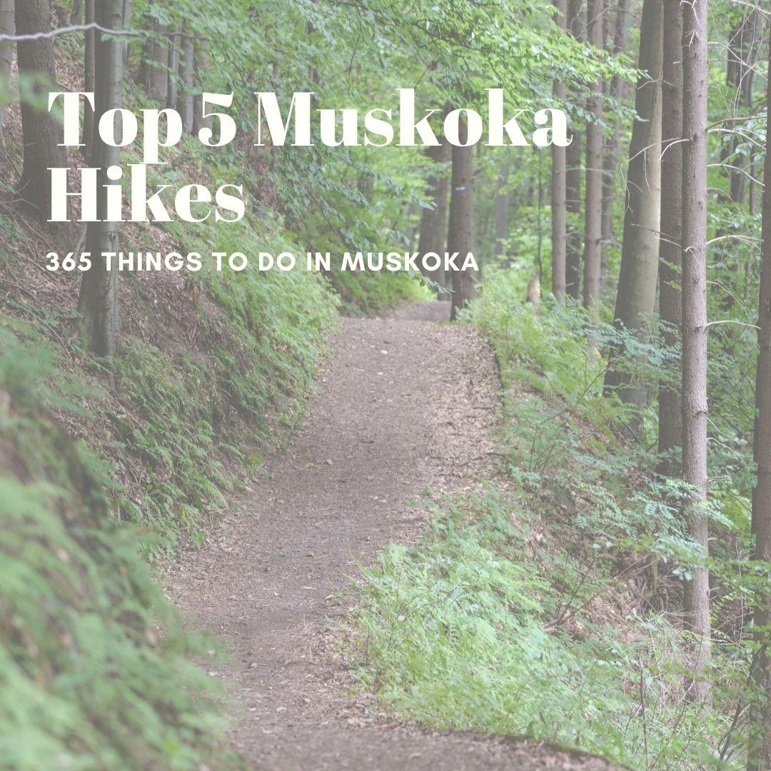 Our Top 5 Muskoka Hikes